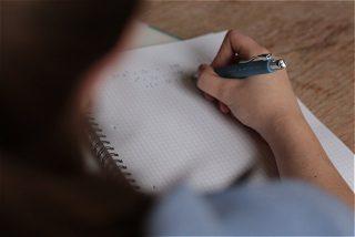 پایان نامه بررسی تاثیر قابلیت بازاریابی روی عملکرد بنگاه های کوچک و متوسط صادرکننده فرش