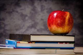 پایان نامه ارزیابی اهداف و شیوه های پرورش مدیران